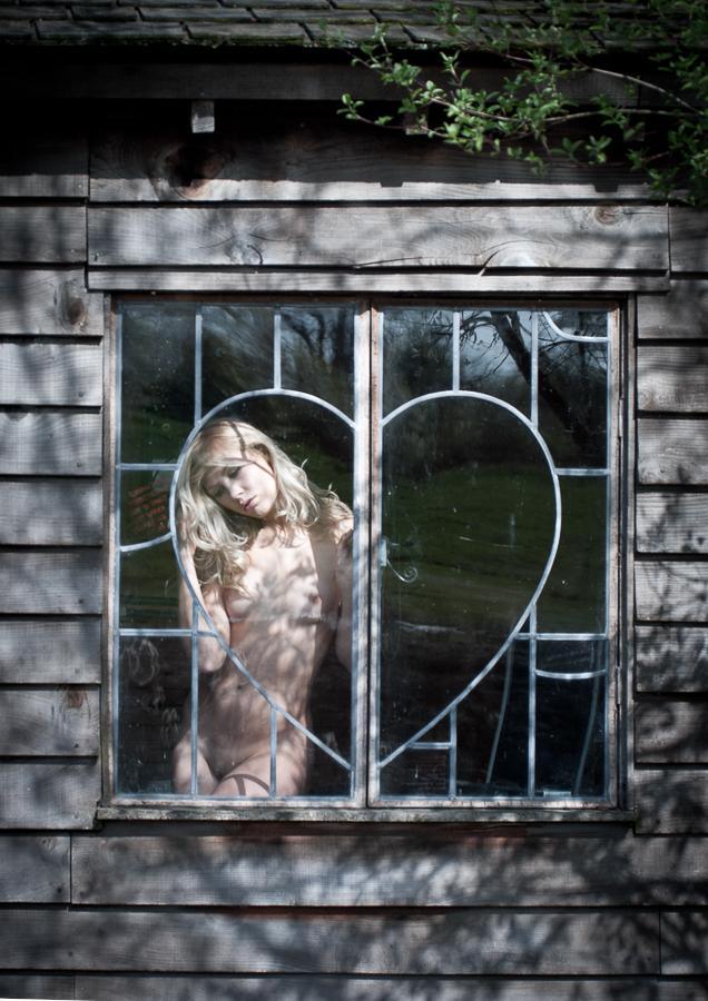 Tim_Pile_Sweetheart_HIGNFY-Windows_4